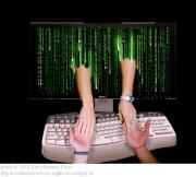 """היכרויות און-ליין. החוקרים: """"האינטרנט משנה את מוסד הנישואין"""""""